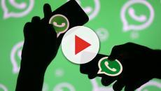 Whatsapp nuovo aggiornamento: sarà possibile rispondere in privato nei gruppi
