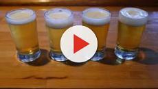 La Brasserie Fondamentale, le renouveau de la bière artisanale