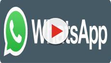 WhatsApp, novità privacy e sicurezza: sblocco tramite impronta digitale e volto