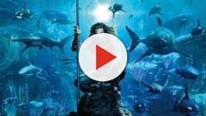 Focus sur le succès du film Aquaman