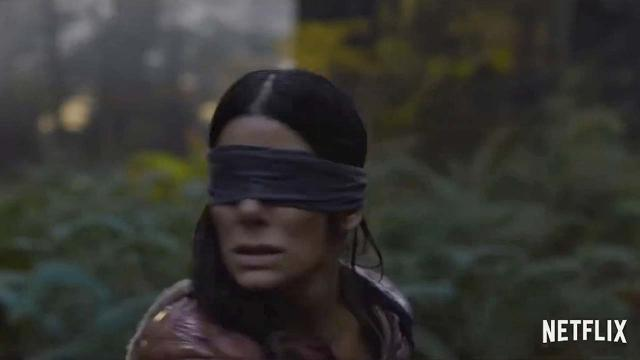 Bird Box Challenge: Teen crashes car while driving blindfolded