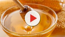 5 excelentes benefícios do mel