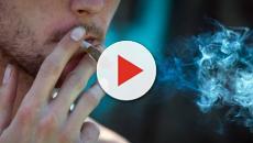 Cannabis, anche uno spinello modifica il cervello di un adolescente