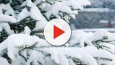 Previsioni Meteo, temperature in calo: dal 23 gennaio arriva il vortice polare