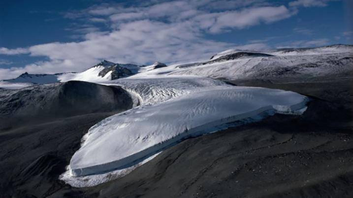 Antartide: un team di ricercatori scopre resti di animali.