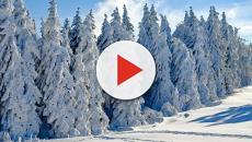 Tre quarti di Stati Uniti sotto il freddo polare