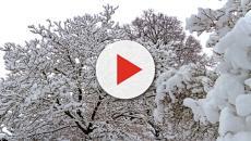 Previsioni meteo, prevista neve anche nelle pianure del Nord Italia