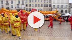 les grandes marques mettent le cochon à l'honneur pour le nouvel an chinois