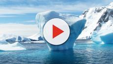 Scioglimento ghiacci, caos climatico per fine secolo: gli scienziati lanciano l'allarme
