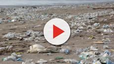 California: Rains sweep down tons of litter to Seal Beach