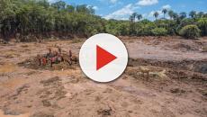 Cinco desaparecidos são encontrados com vida em Brumadinho