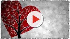 San Valentino: frasi d'amore da inviare su Whatsapp