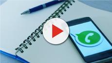 WhatsApp e l'aggiornamento: l'utente può decidere se essere messo in un gruppo