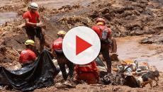 Bombeiros que trabalharam no resgate em Brumadinho estão com metais no organismo