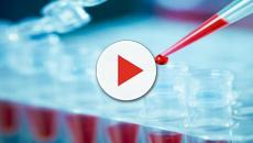 Germania, la diagnosi del tumore al seno tramite analisi del sangue