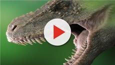 Estinzione dei dinosauri: contribuirono anche dei fenomeni vulcanici