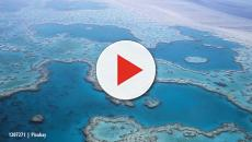 Australia's Great Barrier Reef exposed to potential pollution