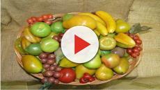 Aproveite as frutas típicas do outono