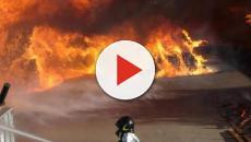 Calabria, arsa viva dall'ex evaso dai domiciliari: 'Spensi il viso in una pozzanghera'