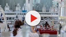 Milano: scoperto il meccanismo con cui la leucemia inganna il sistema immunitario