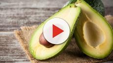 Alimentos que controlam e ajudam a cuidar do colesterol