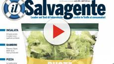 Secondo Il Salvagente, insalate in busta sarebbero piene di pesticidi e metalli pesanti