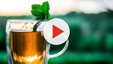 Salute e alimentazione: 6 cibi fermentati che aiutano a restare in forma
