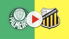 Palmeiras x Novorizontino: transmissão pelo Premiere, às 21h
