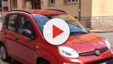 Fiat Panda e Lancia Ypsilon: aumentano le vendite rispetto al 2018
