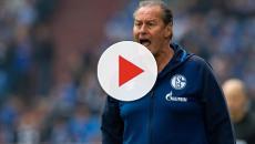 Schalke - Stevens nach Frankfurt: