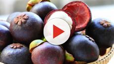 Frutas exóticas encontradas no Brasil