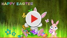 Auguri Buona Pasqua: frasi originali e simpatiche da inviare