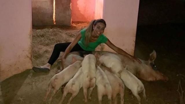 BBB19: Paula, a campeã, reencontra Pippa, sua porca de estimação, e conhece filhotinhos