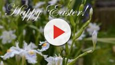 Pasqua: idee per auguri originali, usando aforismi e frasi famose