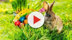 Pasqua: Una ricorrenza fatta di usanze e tradizioni antichissime