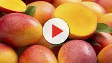 Il mango, 7 proprietà benefiche tra le quali la presenza di magnesio e vitamina C