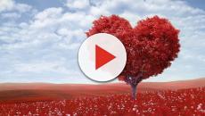 Oroscopo dell'amore dei cuori solitari per il giorno 27 aprile