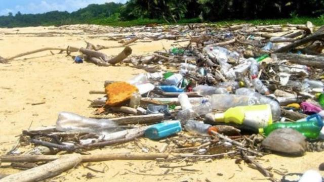 414 million pieces of plastic found on remote island group in Indian Ocean