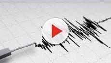 Terremoto nelle Marche: sisma di magnitudo 3.0