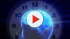Pubblicato sulla rivista 'Trends in Immunology' uno studio sul ritmo circadiano