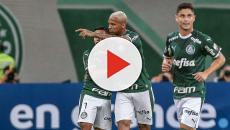 Palmeiras viaja até o Maranhão para encarar o Sampaio Corrêa pela Copa do Brasil
