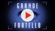 Grande Fratello, riassunto 7^ puntata: eliminato Gaetano, Michael fra i 3 nominati