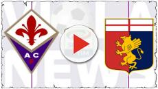 Serie A, Fiorentina-Genoa: domenica 26 maggio alle 20:30 su Sky Sport