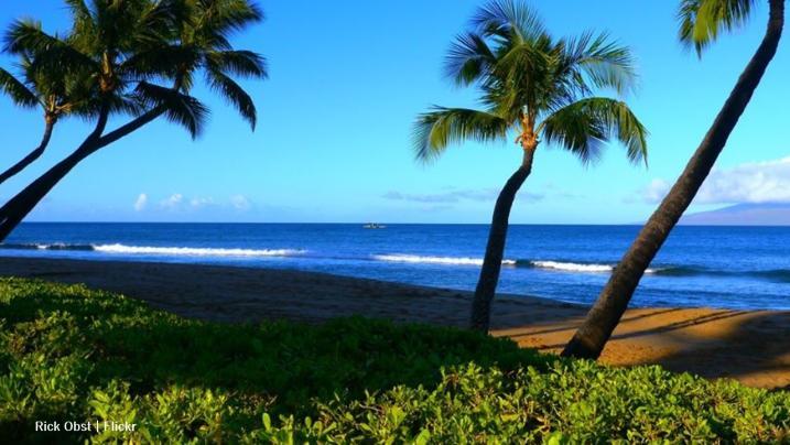 Hawaii: Ka'anapali beach the scene of a fatal shark attack this weekend