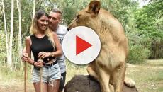 Deulofeu y su novia se hacen unas fotos con un leon