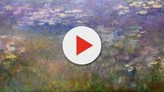 Monet, Glicini ai raggi X ed i restauratori scoprono un altro dipinto dell'artista