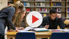 La universidad es clave para promover la cultura emprendedora