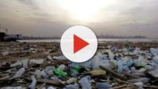 La France affiche un niveau record de pollution plastique en Méditerranée