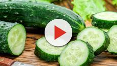 Il Cetriolo, 5 proprietà benefiche di questo ortaggio