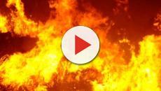 Brindisi: Un incendio ha devastato il parco naturalistico di Punta del Serrone
